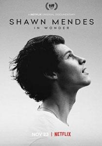 دانلود فیلم Shawn Mendes: In Wonder 2020